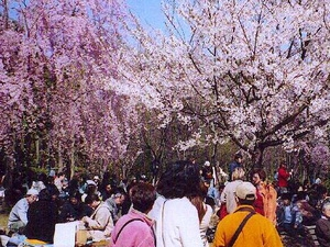 Một số lễ hội mùa xuân hấp dẫn trên thế giới