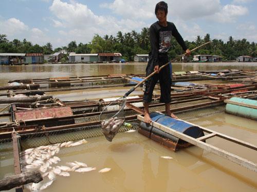 Di dời KCN Biên Hoà 1 để giữ nước sinh hoạt cho 10 triệu người dân