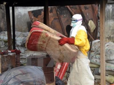 Dịch Ebola đe dọa thành tựu về phòng chống bệnh sốt rét