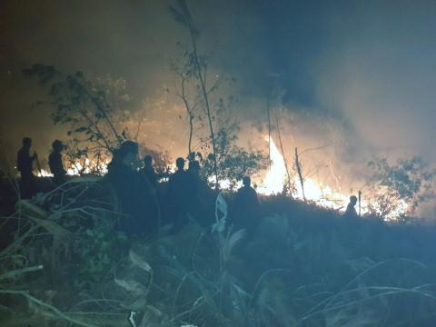 Dập tắt đám cháy rừng keo ở Uông Bí - Quảng Ninh
