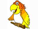 Chùm truyện cười về những con vẹt