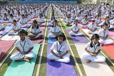 WHO kêu gọi tập Yoga vì sức khoẻ