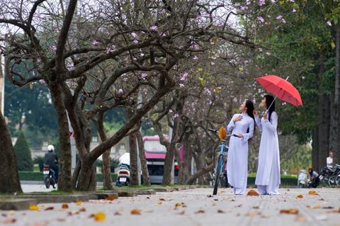 Xây dựng người Hà Nội thanh lịch, văn minh  - Chú trọng văn hóa ứng xử nơi công cộng