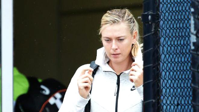 Halep, Sharapova rút khỏi Brisbane