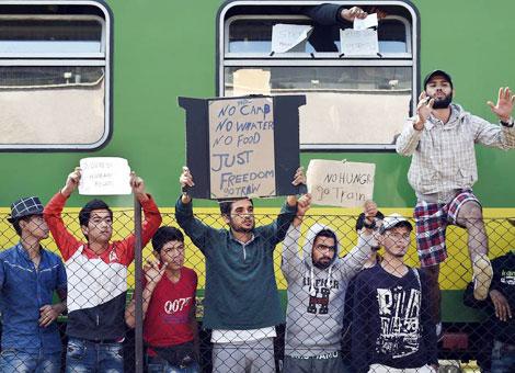 WHO cảnh báo người di cư mang bệnh lao đa kháng thuốc vào châu Âu