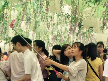 Lễ hội hoa tử đằng: 'Trồng' hoa giả, làm... ngã ngửa người xem