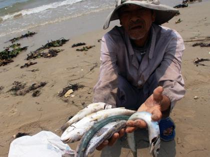Vụ sự cố môi trường Formosa: Bộ Tài nguyên-Môi trường nhận trách nhiệm