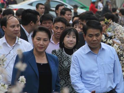 Chùm ảnh: Chủ tịch Quốc hội Nguyễn Thị Kim Ngân tản bộ thưởng lãm hoa anh đào