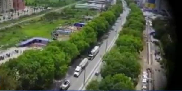 VIDEO: Cân nhắc chặt hạ cây xanh giữa nắng nóng trên 40 độ C