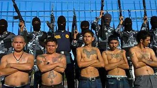 Mỹ và Mexico tái khởi động cuộc chiến chống tội phạm ma túy