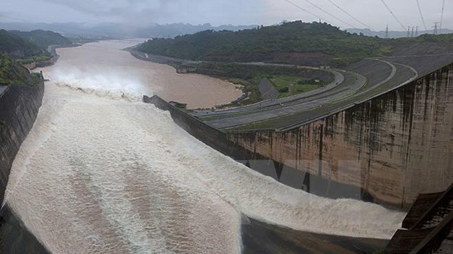 Hơn 400 tấn cá nuôi trên sông Đà chết sau khi thủy điện xả lũ