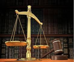 Lý do làm luật sư