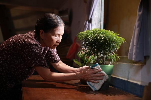 Cập nhật phim Việt chiếu rạp... ngay tại nhà