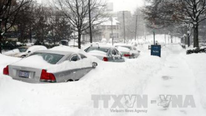 Bão lớn kèm mưa to và tuyết tấn công Đông Bắc Mỹ, 5 người chết