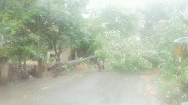 Thời tiết 12/5: Hà Nội có mưa rào và dông rải rác, nhiệt độ từ 23-31 độ C