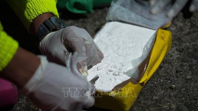 Colombia thu giữ hơn 2,2 tấn cocaine của một nhóm lý khai từ FARC