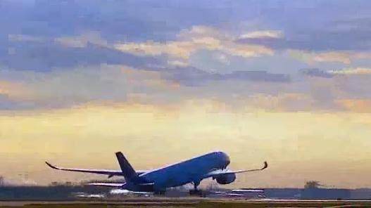 VIDEO: Chính phủ đồng ý cấp phép bay cho Bamboo Airways