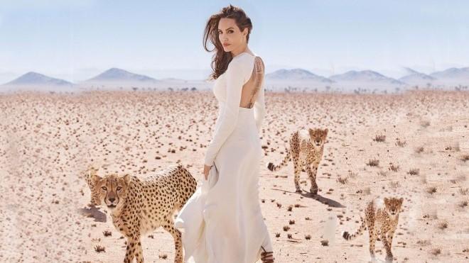 Angelina Jolie: Sự thực về đường tình của 'Nữ hoàng Hollywood'