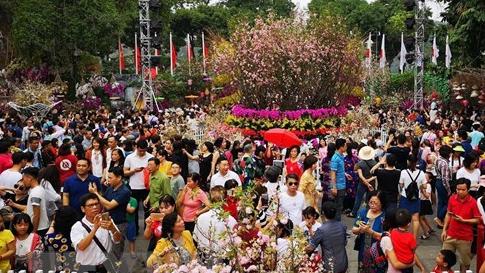 Lễ hội hoa anh đào được xác lập kỷ lục Việt Nam
