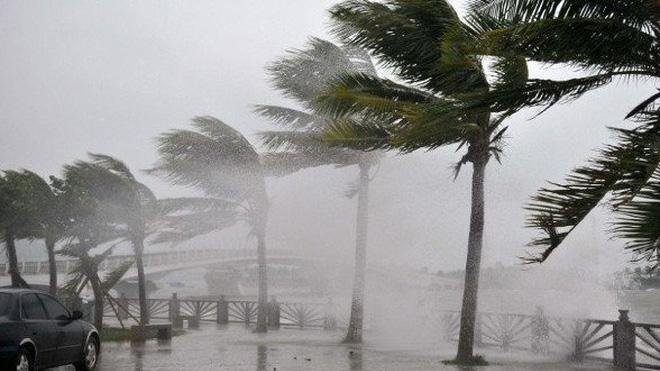 Mùa mưa bão năm 2019: Đề phòng những cơn bão mạnh và có quỹ đạo phức tạp