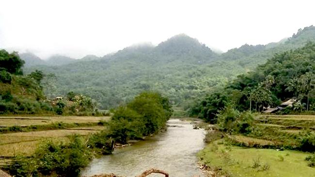 Trên đường ra đồng gặt lúa, hai nông dân Thanh Hóa bị điện giật tử vong