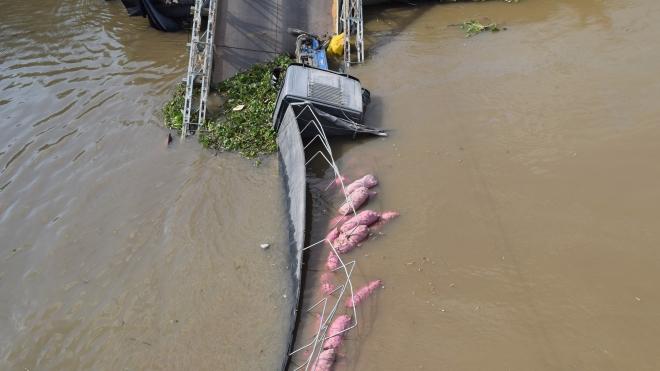 Bộ GTVT ban hành công điện khẩn khắc phục sự cố sập cầu Tân Nghĩa, Đồng Tháp