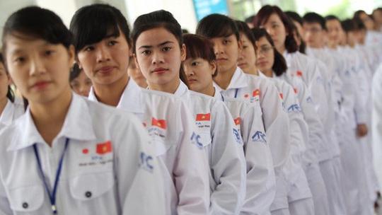 Cơ hội cho thực tập sinh khi kết thúc thời gian lao động tại Nhật Bản