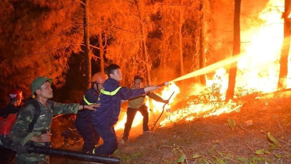 Công điện của Thủ tướng về tăng cường các biện pháp cấp bách phòng cháy, chữa cháy rừng