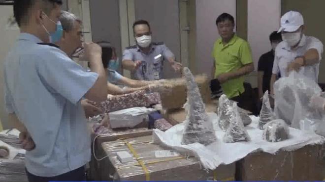 Thu giữ 55 khúc sừng tê giác tại sân bay Nội Bài