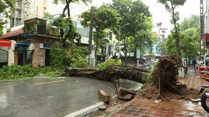 Hà Nội mưa to, đổ cây và ngập úng nhiều tuyến phố do bão số 3
