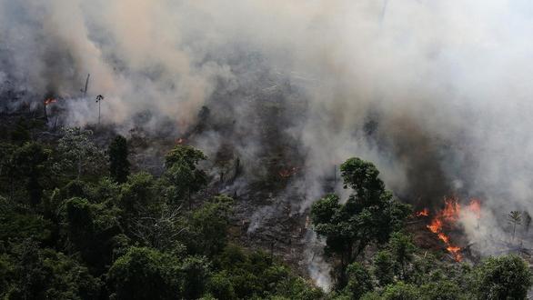 Tuần hành tại nhiều nơi kêu gọi bảo vệ rừng Amazon