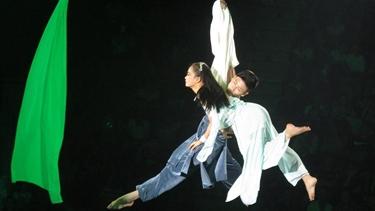Xiếc Việt cho khán giả Việt