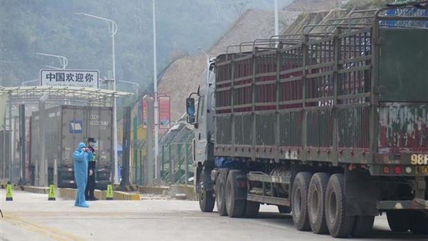 Dịch COVID-19: Lượng hàng chờ xuất khẩu tại cửa khẩu ngày càng tăng