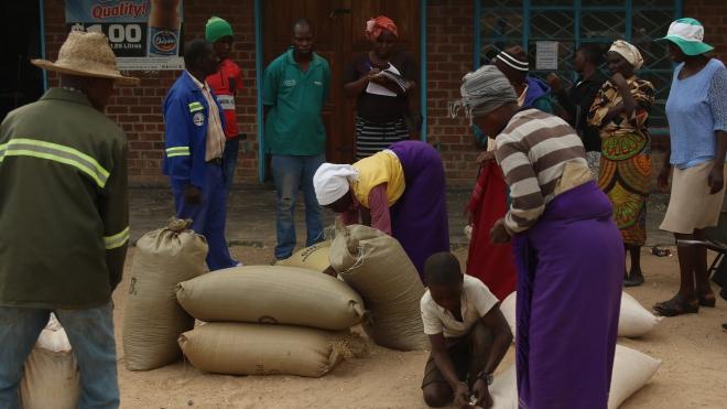 Dịch COVID-19: WB cảnh báo tác động đối với an ninh lương thực