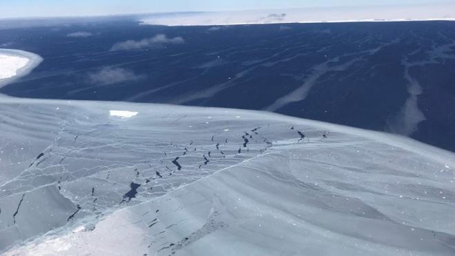 Biến đổi khí hậu khiến 'tuyết xanh' xâm chiếm Nam Cực