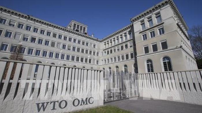 Cuộc đua trở thành tân Tổng Giám đốc của WTO bước vào 'vòng chung kết'