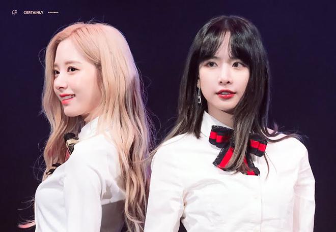 Twice, Blackpink, Combom visual của nữ thần Kpop, Nayeon, Jisoo, Jennie, Sana