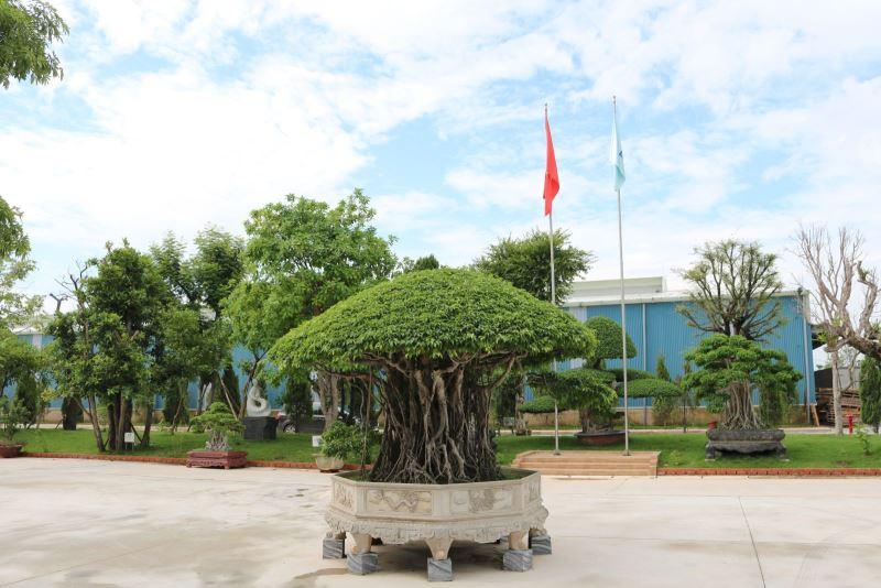 Khuôn viên nhà máy gạch ốp lát Granite Thạch Bàn Bắc Giang