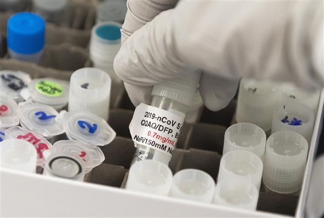 Trong ảnh: Nghiên cứu các mẫu vaccine phòng COVID-19 tại phòng thí nghiệm Novavax ở Rockville, bang Maryland, Mỹ, ngày 20/3/2020. Ảnh: AFP/TTXVN