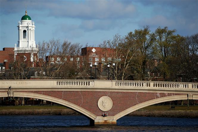 Trong ảnh: Khuôn viên Đại học Harvard ở Cambridge, Massachusetts, Mỹ. Ảnh: AFP/TTXVN