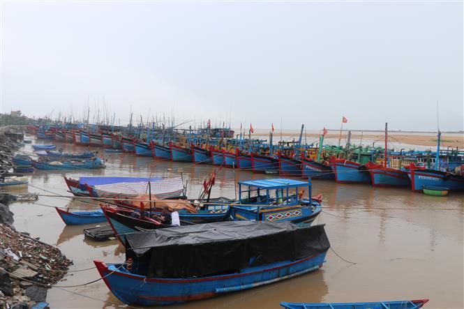 Ngư dân ven biển Phú Yên ứng phó với mưa lũ do áp thấp