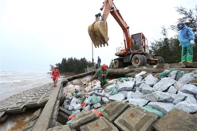 Gia cố điểm sạt lở tại đê biển xã Thịnh Lộc (huyện Lộc Hà). Ảnh: Minh Quyết - TTXVN