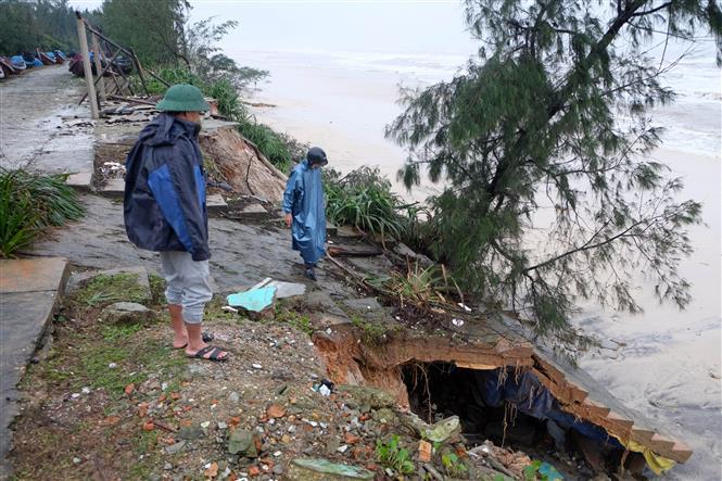 Hệ thống kè biển ở huyện Vĩnh Linh bị sạt lở do ảnh hưởng bão số 13. Ảnh: Hồ Cầu-TTXVN