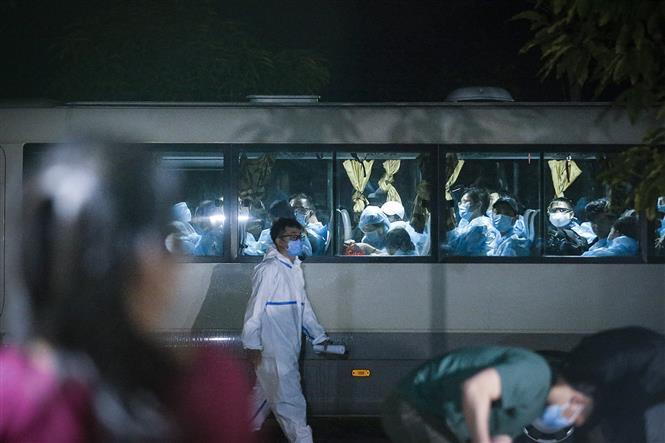 Đoàn xe đưa các công dân về điểm cách ly tập trung theo dõi COVID-19 vào rạng sáng ngày 10/2020. Ảnh: Trọng Đạt - TTXVN