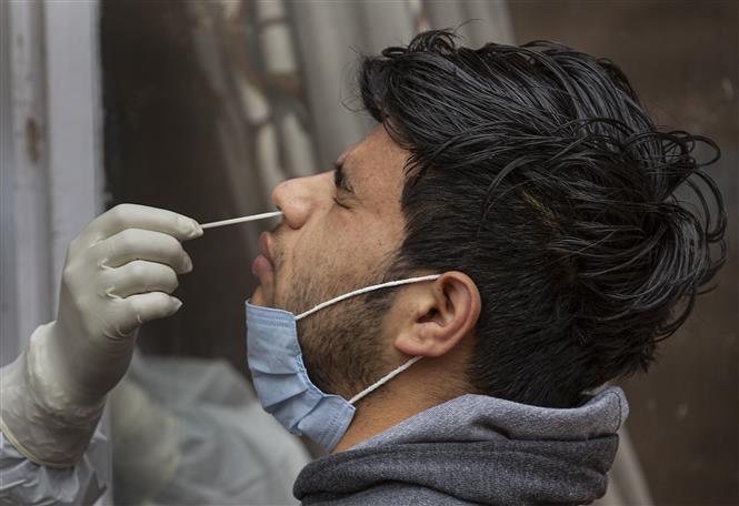 Trong ảnh: Nhân viên y tế lấy mẫu xét nghiệm COVID-19 tại Srinagar, Ấn Độ, ngày 27/1/2021. Ảnh: THX/TTXVN