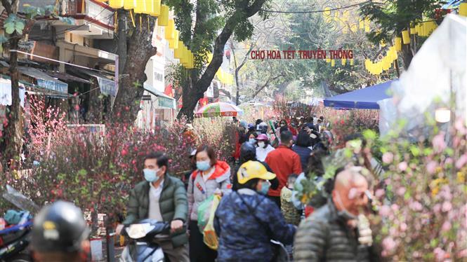 Người dân náo nức đi chợ hoa Tết truyền thống. Ảnh: Thanh Tùng - TTXVN