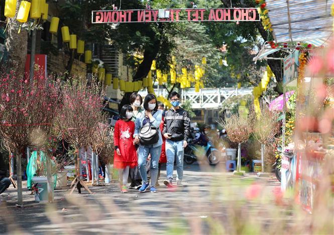 Trong ảnh: Người dân náo nức đi chợ hoa Tết truyền thống. Ảnh: Thanh Tùng - TTXVN