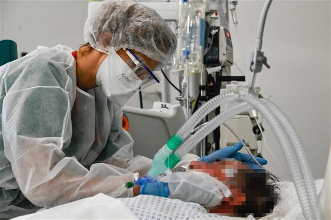 Nhân viên y tế điều trị cho bệnh nhân COVID-19 tại bệnh viện ở Colmar, miền đông nước Pháp, ngày 22/1/2021. Ảnh: AFP/ TTXVN