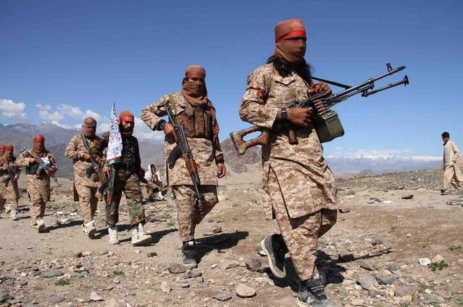 phiến quân Taliban, phiến quân Taliban thiệt mạng