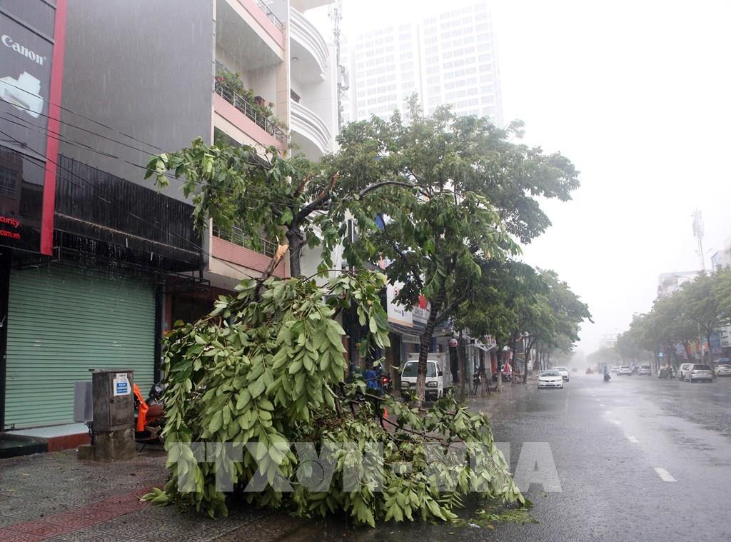 Áp thấp nhiệt đới sắp mạnh lên thành bão, áp thấp cách bờ biển Khánh hòa 500km, áp thấp nhiệt đới, Trung tâm dự báo khí tượng thủy văn Quốc gia, dự báo thời tiết